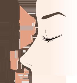 隆鼻術説明図